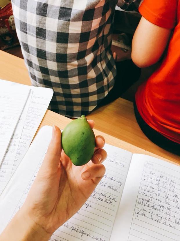 Một cân xoài Thái chưa chắc ngon bằng 1 trái xoài mót nhé.
