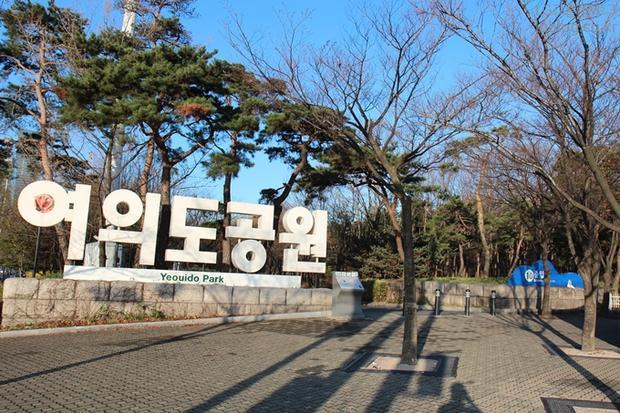 Tất tần tật kinh nghiệm du lịch Hàn Quốc mùa hoa anh đào (Kỳ 2)