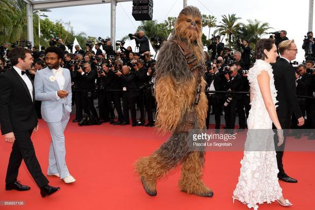 Chewbacca của Star Wars trên thảm đỏ.