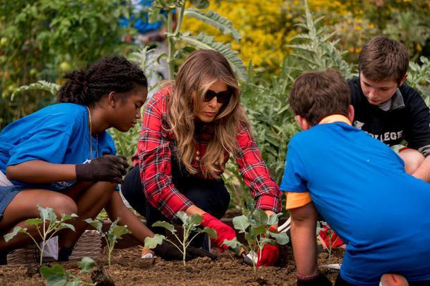 Đệ nhất phu nhân Mỹ tham gia buổi làm vườn tại Nhà Trắng hôm 22/9/2017.