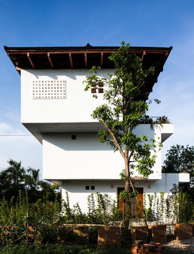 Xung quanh nhà được trồng khá nhiều cây xanh.