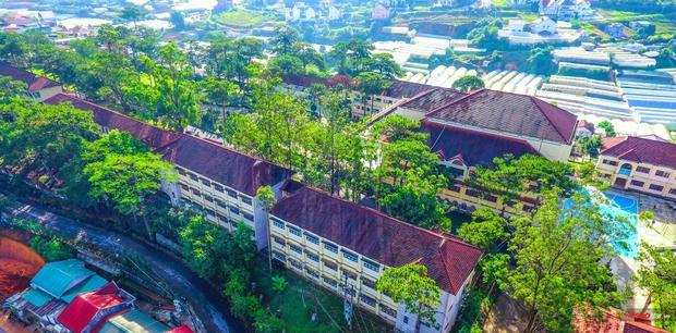 Tọa lạc trên một ngọn đồi, trường tớ được ôm ấp bởi màu xanh ngút ngàn của thông và hoa lá.