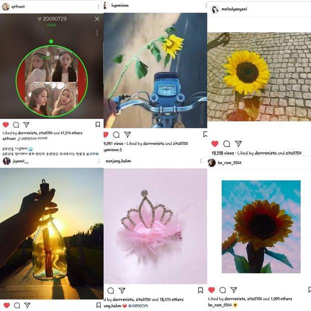 Ngày 29/7/2017 quả là một ngày đầy cảm xúc với người hâm mộ T-ara. Cả 6 cô gái cùng đăng tải những bức ảnh kỉ niệm T-ara tròn 8 tuổi. Điều đáng nói là kể từ khi rời MBK, Soyeon lẫn Boram đều không hề đụng tới mạng xã hội, vậy mà vào kỉ niệm 8 năm của nhóm thì 2 cô nàng xuất hiện với cánh hoa hướng dương - biểu tượng của T-ara và Queen's như một ngụ ý khẳng định T-ara mãi mãi có 6 thành viên.