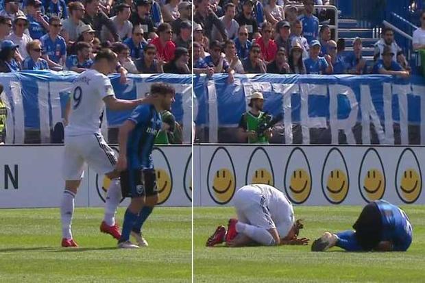 Zlatan Ibrahimovic ăn vạ sau khi đánh Michael Petrasso.