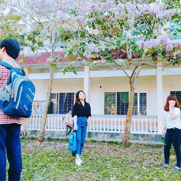 Vẻ lãng mạn của khung cảnh nơi này không chỉ thu hút các sinh viên theo học tại trường mà rất nhiều sinh viên các trường khác cũng rủ nhau tới đây để check-in.