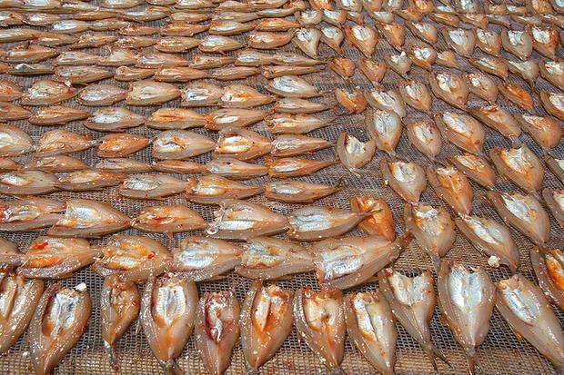 Cá tép dầu khô nơi đây được so sánh với cá chỉ vàng ở vùng biển.
