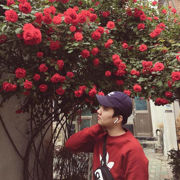 Thành viên Sơn Nguyễn và cánh cổng hoa hồng rực rỡ.