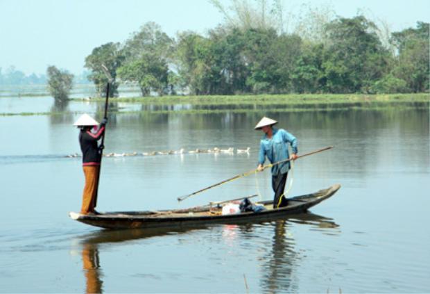 Cửa sông Ô Lâu là nơi người dân khai thác vẹm đen.