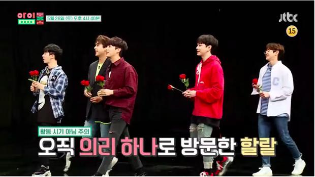 Highlight xuất hiện với những cành hoa hồng trên tay đầy lung linh và quyến rũ.