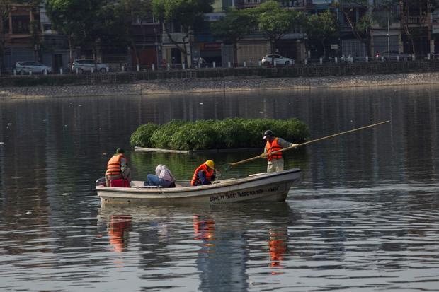 Trên mặt hồ, các thuyền viên đang di chuyển để vớt cá.