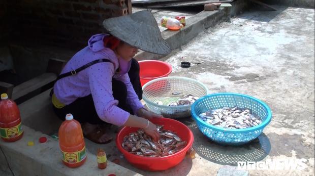 Cá được rủa lại bằng nước sạch, để ráo.