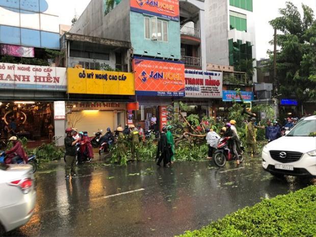 Một cây xanh bị gẫy sau mưa lớn đổ xuống đường. Ảnh: Đan Nguyên.