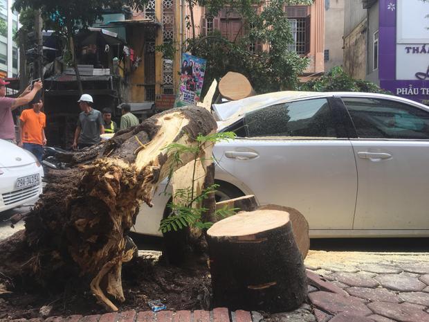 Chiếc xe bị hư hỏng nặng.