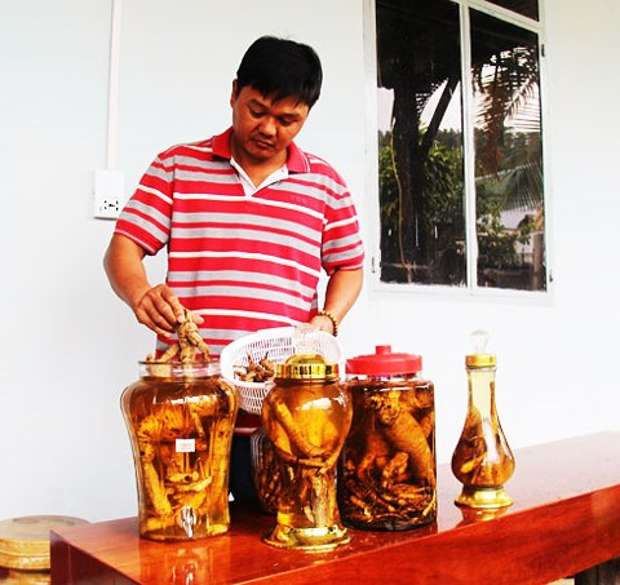 Rượu ngâm sâm Bố Chính hiện nay là đặc sản của người dân Khánh Sơn.