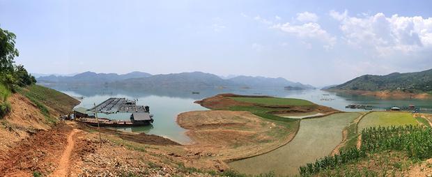 Người Thái nuôi vịt trời ở lòng hồ thuỷ điện Sơn La