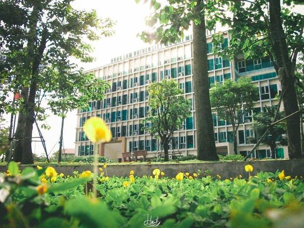"""Đây là tòa nhà điều hành mang tên loài hoa Thiên Lý mới đưa vào hoạt động. Trước sân tòa nhà này được bao phủ """"hoa vàng cỏ xanh"""" vô cùng thơ mộng, xinh đẹp."""