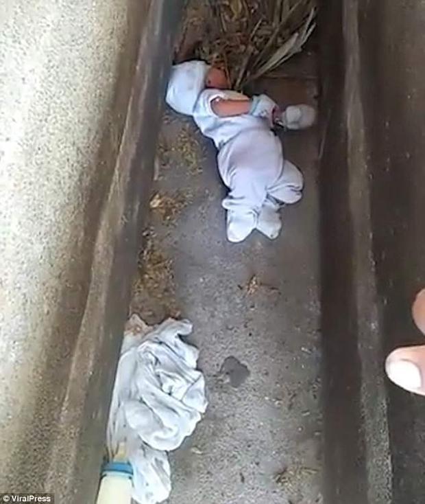 Em bé bị bỏ rơi giữa hai ngôi mộ tại 1 nghĩa trang, xung quanh có rất nhiều thú hoang và động vật gặm nhấm.