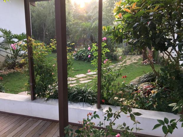 Khu vườn được chăm chút tỉ mỉ đến từng chi tiết nhỏ.