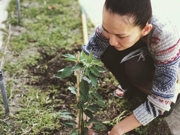 Thời gian rảnh rỗi, Kim Hiền tận tay chăm sóc cho khu vườn nhỏ với những loại cây quen thuộc ở quê nhà.