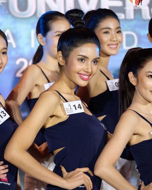 Nhờ gương mặt lai, Vena dễ dàng nổi bật giữa dàn thí sinh năm nay. Ngay từ khi cuộc thi khởi đầu, cô đã được fan trong nước và quốc tế kỳ vọng sẽ chinh phục được ngôi vị cao nhất Hoa hậu Hoàn vũ Thái Lan năm nay.