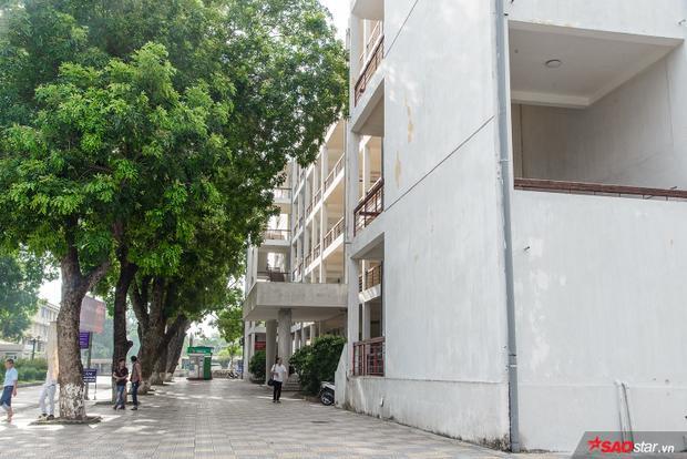 Lối đi trong khuôn viên trường xanh ngát như một thiên đường xanh.