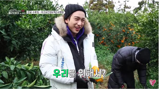 Nụ cười ngọt ngào của Jinyoung khi hái quýt.