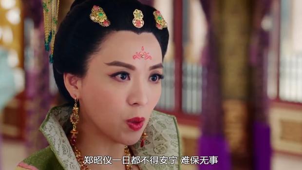 Thái Bình công chúa không muốn Trịnh Chiêu nghi được người của hoàng hậu chăm sóc vì sợ cháu mình sẽ tiếp tục bị hãm hại.