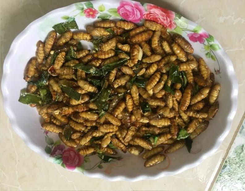 Đặc sản nhộng tằm rang lá chanh được rất nhiều du khách gần xa ưa chuộng, khi đặt chân đến tỉnh Sơn La du lịch