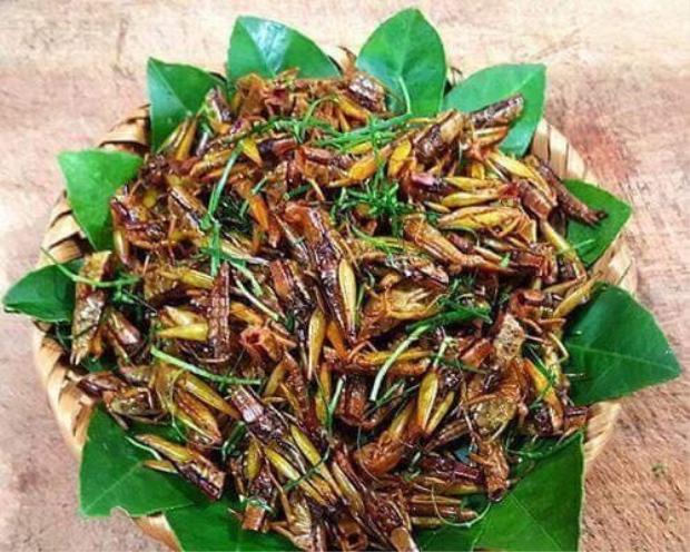Đặc sản châu chấu rang lá chanh là món ăncó hương vị đậm đà khó cưỡng, cuốn hút du khách