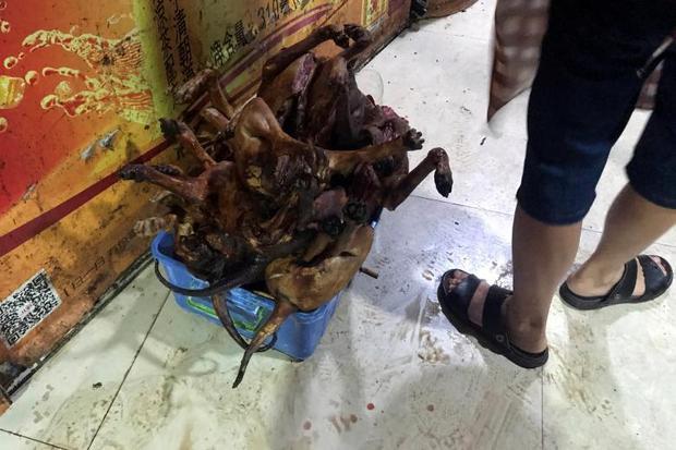 """Nhiều người dân tại thành phố Ngọc Lâm cho rằng lễ hội thịt chó là một phong tục của địa phương nên nhất quyết không chịu thay đổi. Wang Yue, một người sống tại Ngọc Lâm chia sẻ: """"Thực ra, giết con vật nào cũng máu me như thế cả không riêng gì chó. Tôi hy vọngmọi người có thể nhìn nhận lễ hội này một cách khách quan""""."""