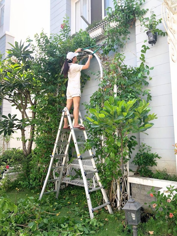 Bản thân Thúy Hạnh cũng không nề hà điều gì khi leo trèo để chăm chút cho khu vườn của mình.
