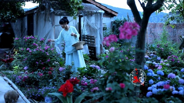 Cô gái vùng Tứ Xuyên này chăm sóc cho khu vườn luôn xinh đẹp nhất khiến cả triệu người mê đắm.