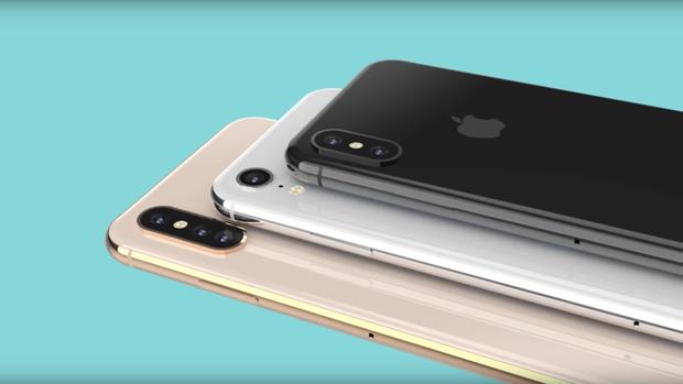 Thiết bị có màn hình 6,1 inch trong khi đó có màn hình TFT-LCD. Với chi phí linh kiện thấp hơn, đây sẽ là chiếc iPhone có giá mềm nhất trong năm nay. So với màn hình OLED, màn hình LCD có chất lượng hiển thị không được đánh giá cao bằng, trong khi lại tiêu tốn nhiền năng lượng hơn.