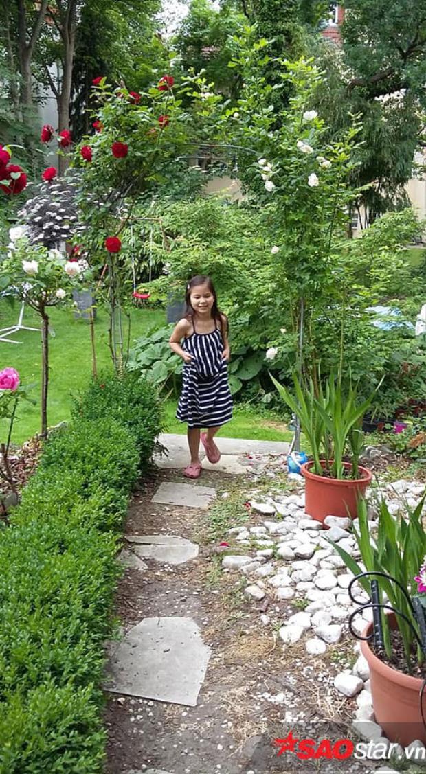 Khu vườn vừa giúp gia đình có thêm rau xanh, lại giúp anh chị giải tỏa stress trong cuộc sống. Chị cũng tận dụng những loại phân hữu cơ được ủ tự nhiên từ cỏ, lá cây, vỏ trứng, bã chè hay cafe…