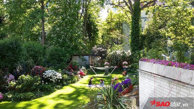 Chị Hoàng Trang hiện đang sinh sống cùng chồng và hai con gái ở Berlin, Đức. Chị Trang sang đây từ năm 2006. Khu vườn nhà anh chị rộng 500m2.