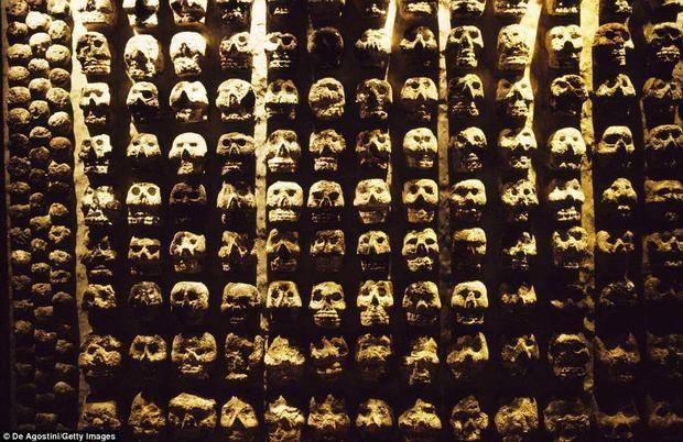 """Vào năm 2015, các nhà khảo cổ thuộc Viện nhân chủng học và lịch sử quốc gia Mexico phát hiện thấy hơn 650 hộp sọ đóng cứng, xếp chồng lên nhau thành một ngọn tháp tại một công trình gần Templo Mayor - một trong những ngôi đền thiêng nằm tại trung tâm thành phố Tenochtitlan của đế chế Aztec.Ngọn """"tháp đầu lâu"""" này có đường kính gần 5 m và cao ít nhất 1,7 m."""