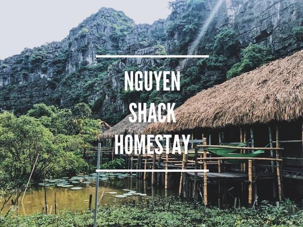 Dịch vụ lưu trú tại Ninh Bình rất phong phú. Tuy nhiên, Vân Anh chia sẻ về Nguyen Shack Homestay, view đẹp, được bao quanh bởi núi rừng. Homestay này nổi bật bởi những ngôi nhà làm bằng gỗ nứa, đượm chất thôn quê miền sông nước. Lưu trú tại đây, bạn sẽ có cảm giác trở về với thiên nhiên thực sự. Mở cửa thấy sông nước, tối ngủ nghe tiếng ếch nhái kêu, sáng dậy được hòa mình vào bình minh miền sông nước. Thực đáng để trải nghiệm!