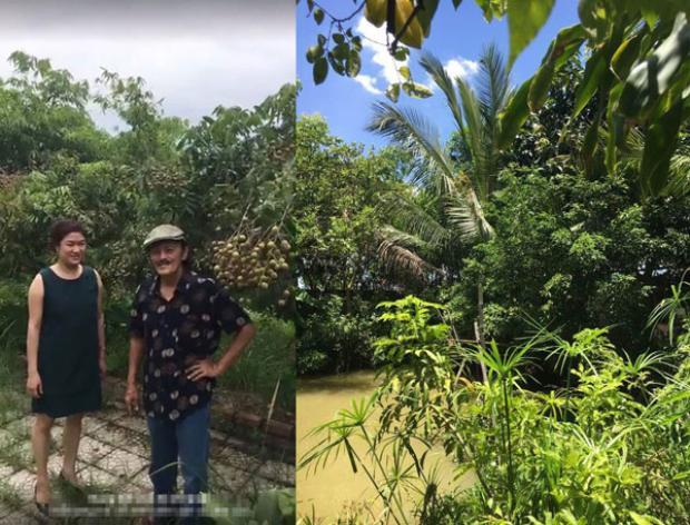 Nghệ sĩ Giang Còi cũng khoe khu vườn đầy cây trái của mình những ngày hè. Anh sở hữu khu vườn rộng ở ngoại thành và sống cuộc sống như một người nông dân thứ thiệt.