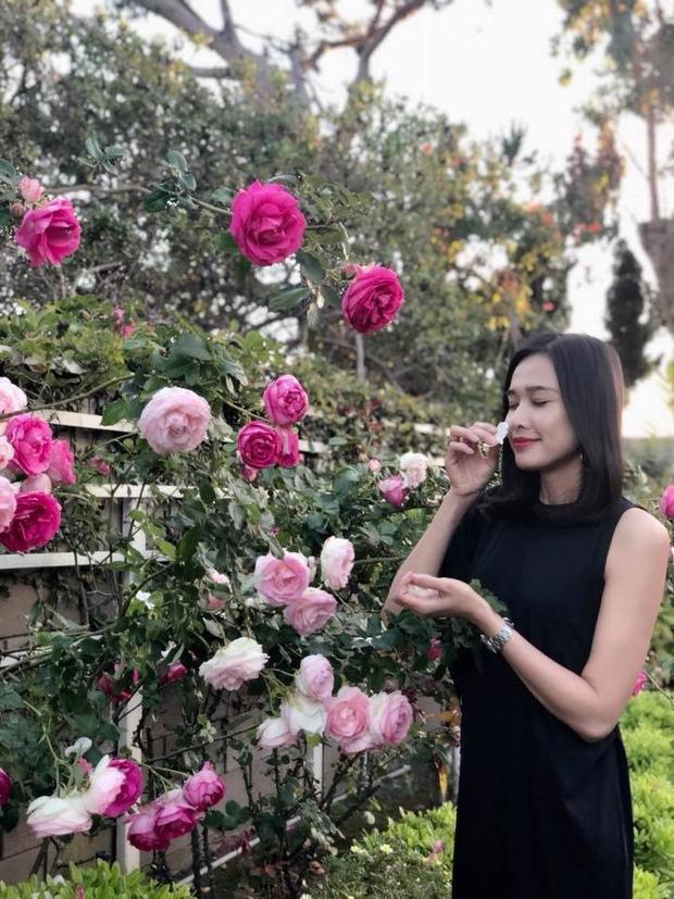 Sống ở Mỹ nhưng người đẹp cũng có khu vườn nhỏ xinh với đầy đủ hoa, rau mướt mắt. Nhiều người khen cô khéo tay, đảm đang với khu vườn rau trái sum xuê của mình.