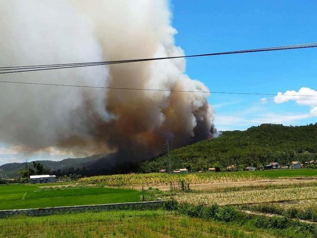Rừng thông xã Diễn Yên bốc cháy.