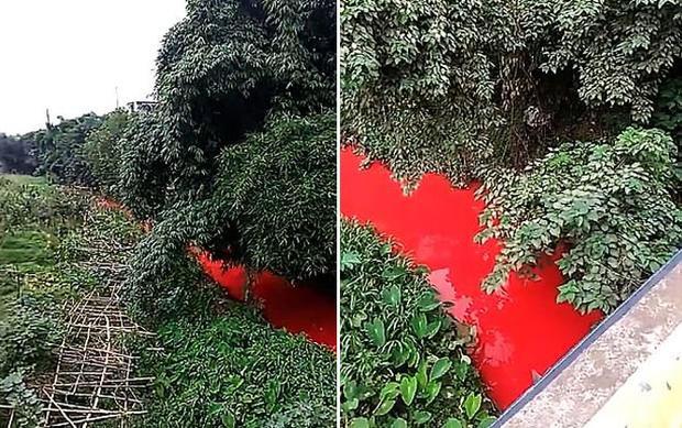 Dòng sông hóa đỏ vì nhà máy sơn gần đó bị rò rỉ.