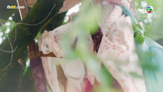 Chiếc thang Nguyên Nguyệt - công chúa Linh Lung (Lưu Tâm Du) trèo lên ngày hôm đó đã bị người ta phá hoại từ trước