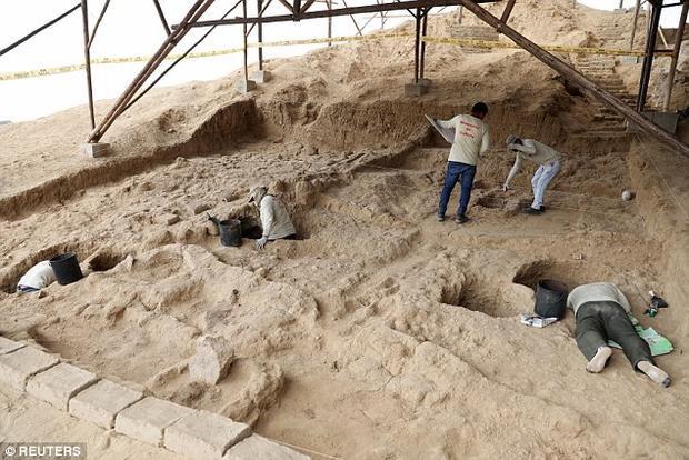 Những nhà khảo cổ học đã tiến hành những nghiên cứu kỹ lưỡng quanh khu vực. Ảnh: Reuters