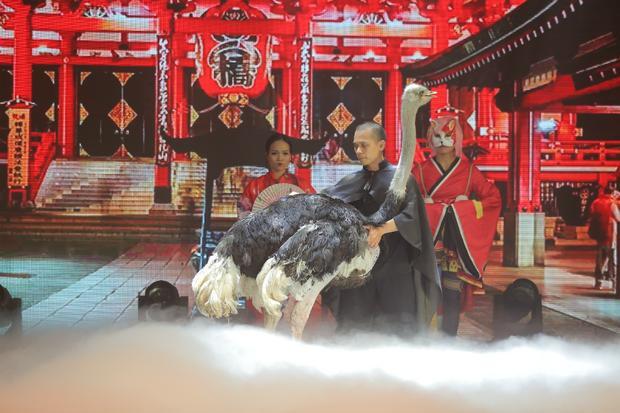 """Giám khảo Palmas ấn tượng nhất với màn """"hô biến"""" chú đà điểu khổng lồ lên sân khấu."""