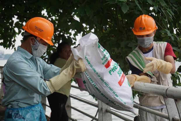 Nhiều cô gái cùng nam công nhân mỏi tay vớt hàng tấn cá chết nổi trắng góc hồ Tây