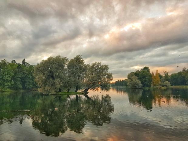 Công viên ngoại ô Moscow khi mặt trời sắp lặn, ở chế độ zoom quang học lên đến 2 lần, ảnh vẫn không bị vỡ.