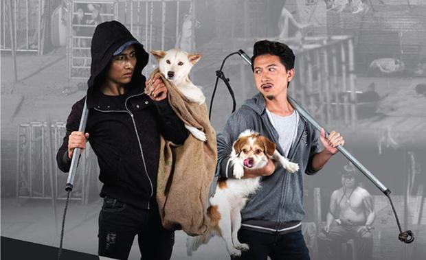 Hai thanh niên trộm chó xui xẻo đến mức… bị chính nạn nhân của mình cắn trả. (Ảnh minh họa).