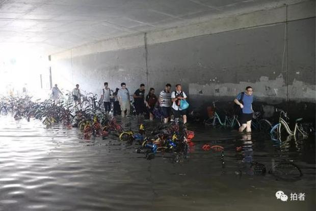 Hàng trăm chiếc xe đạp chìm trong nước.