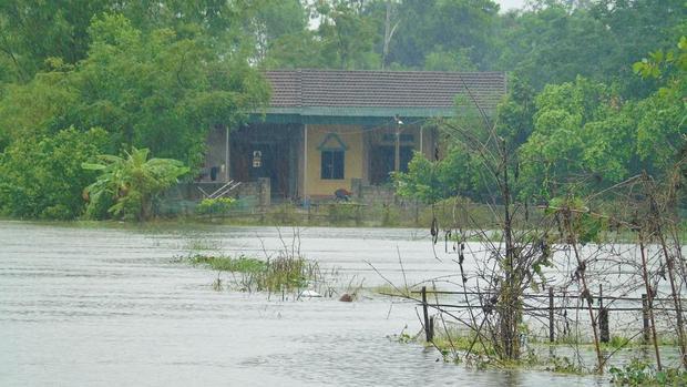 Nhiều nơi tại huyện Đức Thọ đang chìm trong biển nước.