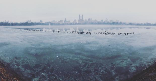"""Giải nhì Panorama - """"Frozen Central Park"""": Vào một ngày mùa đông tôi đang đi dạo trong thành phố thì thấy sương mù trên Central Park. Tôi cảm thấy một phút giây đông cứng, như thế một giấc mơ giữa ban ngày vậy. Tôi biết đó là lúc tốt nhất để dùng tính năng panorama trên iPhone. Chụp bằng iPhone 7 (Burcu Ozturk)."""